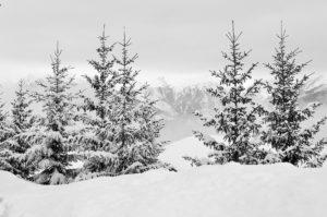 Chalet Chante Bise snow-1178280_1920
